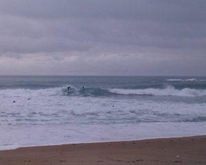 Surf sur la grande plage de Biarritz